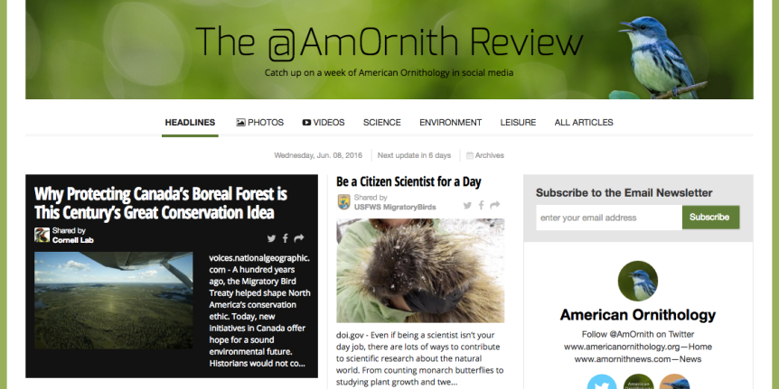 The @AmOrnith Review screenshot