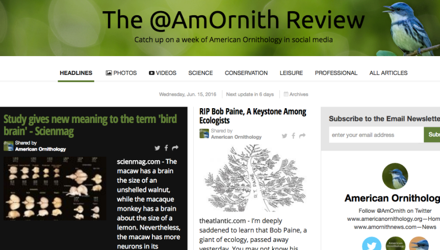 The @AmOrnith Review 6-15-2016