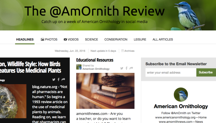 The @AmOrnith Review 6-23-16
