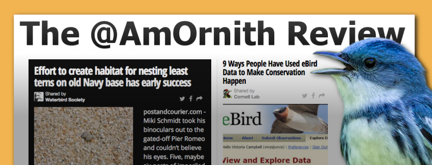 The @AmOrnith Review 7-7-16