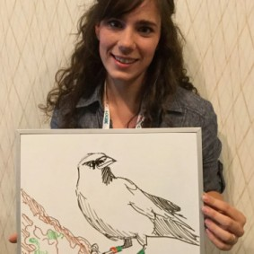 """This American Crow, named """"GO,"""" was dear to UW student Kaeli Swift's heart."""