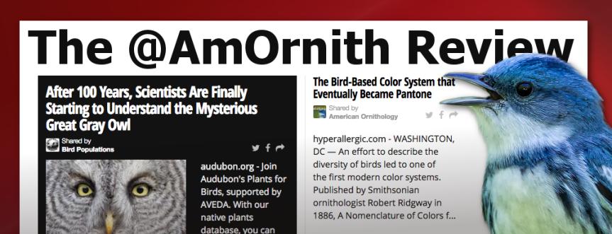The @AmOrnith Review 09-28-16 social.amornithnews.com
