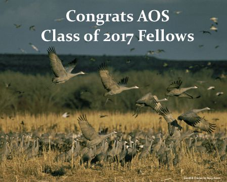 The American Ornithological Society Welcomes the 2017 Class ofFellows
