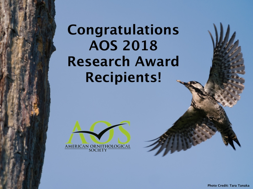 Congratulations 2018 AOS Research Award Recipients!