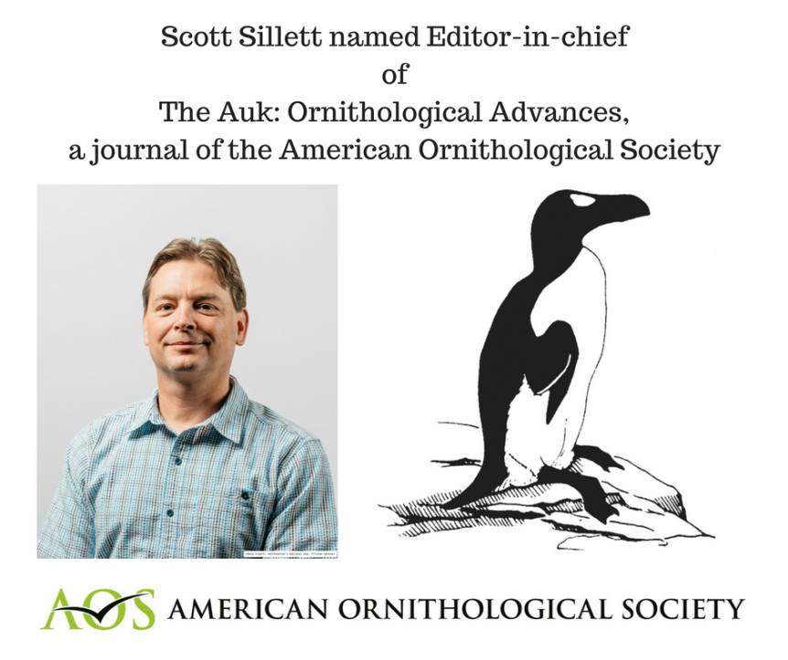 Scott Sillett named Editor-in-chief of The Auk: Ornithological Advances, a journal of the American Ornithological Society